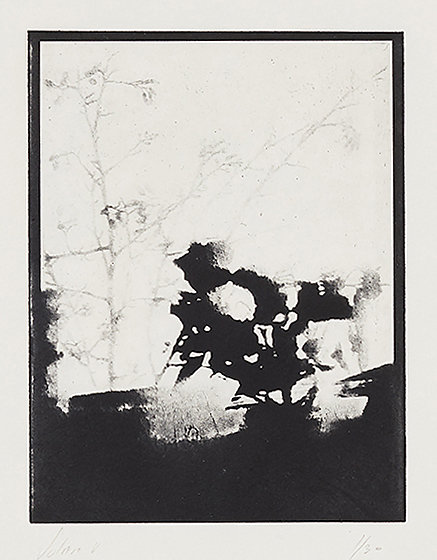 Solar VI - Solar Plate Intaglio Print on Somerset Paper, 49.5cms x 40.0cms - Edition of 30 - £330.00 Framed